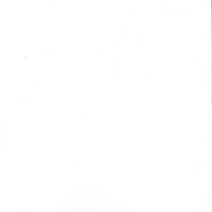 Photographie n°5785 du taxon Ginkgo biloba L. [1771]