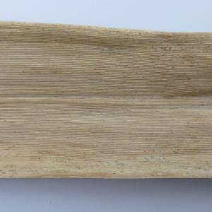Photographie n°115171 du taxon Arundo donax L. [1753]