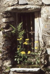 Liliane Roubaudi, le  8 juillet 1998 (Val-d'Isère)