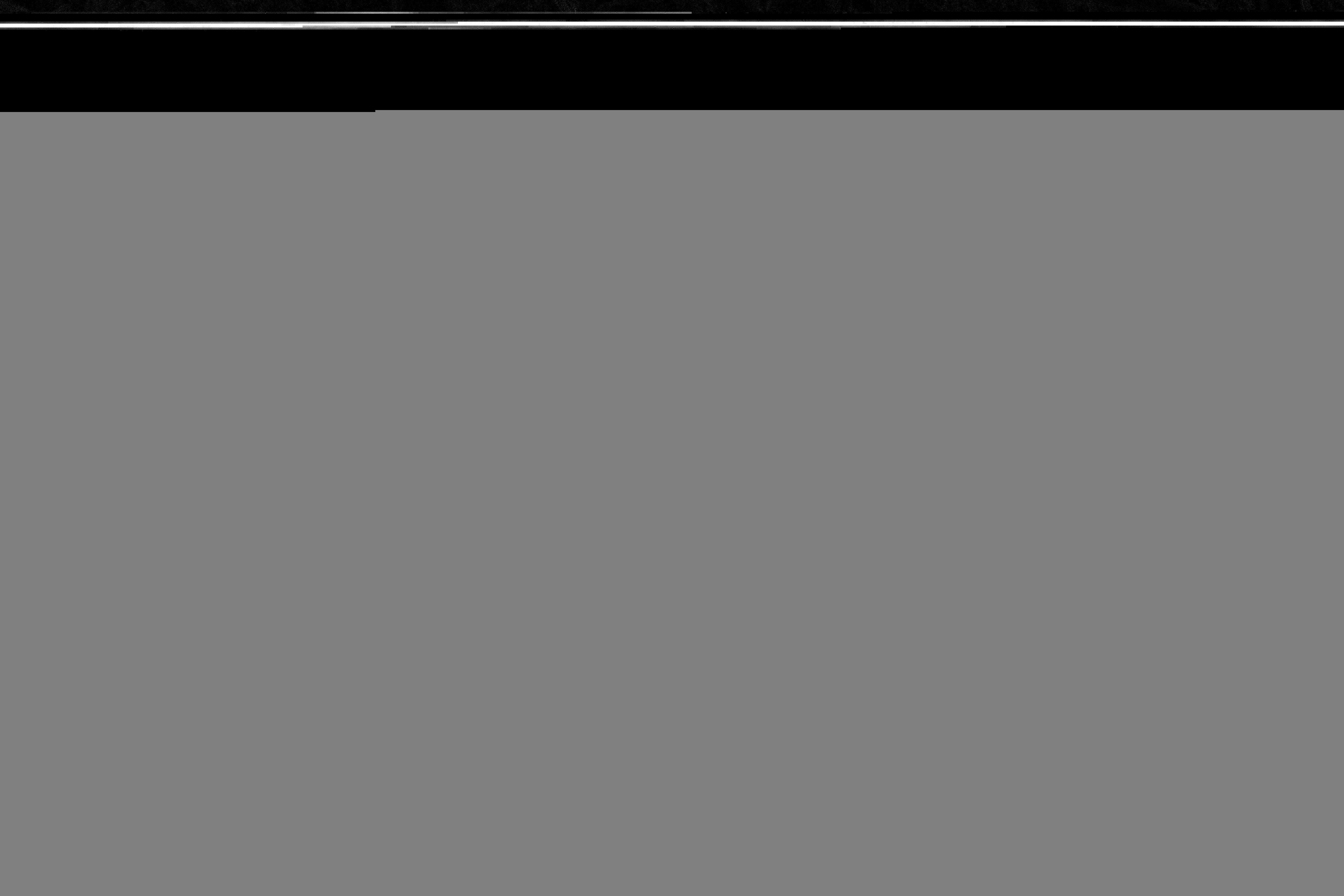 Photographie n°2422276 du taxon Vicia L. [1753]