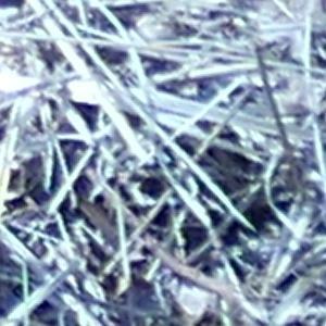 Photographie n°2473725 du taxon Leucanthemum vulgare Lam. [1779]