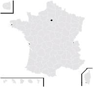 Hieracium blancii J.Serres - carte de répartition