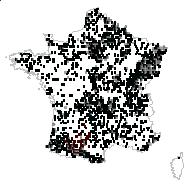 Alnus glutinosa (L.) Gaertn. - carte des observations
