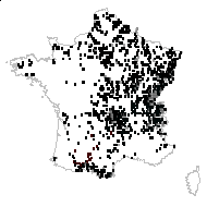 Valeriana officinalis L. - carte des observations