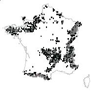 Vitis-idaea myrtillus (L.) Moench - carte des observations