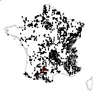 Lathyrus pratensis L. - carte des observations
