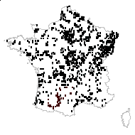 Lysimachia vulgaris L. - carte des observations
