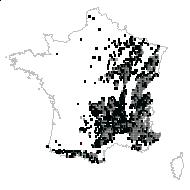 Sorbus aria (L.) Crantz - carte des observations