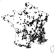 Thymus serpyllum L. - carte des observations