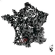 CARYOPHYLLACEAE - carte des observations