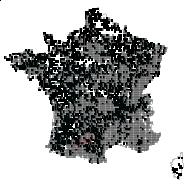 FABACEAE - carte des observations