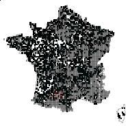 RANUNCULACEAE - carte des observations