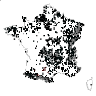 OXALIDACEAE - carte des observations