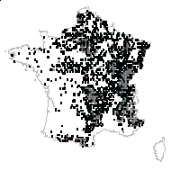 GROSSULARIACEAE - carte des observations