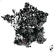 VIOLACEAE - carte des observations