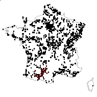 Lythrum salicaria L. - carte des observations