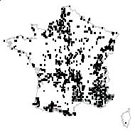 Polygala vulgaris L. - carte des observations