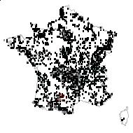 Rumex acetosa L. - carte des observations
