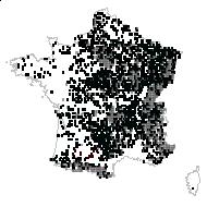 Fragaria vesca L. - carte des observations