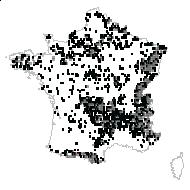 Sorbus aucuparia L. - carte des observations