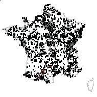 Cirsium arvense (L.) Scop. - carte des observations