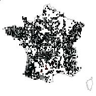Molinia caerulea (L.) Moench - carte des observations