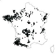 Blechnum spicant (L.) Roth - carte des observations