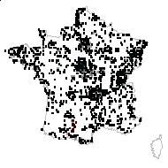 Agrostis stolonifera L. - carte des observations